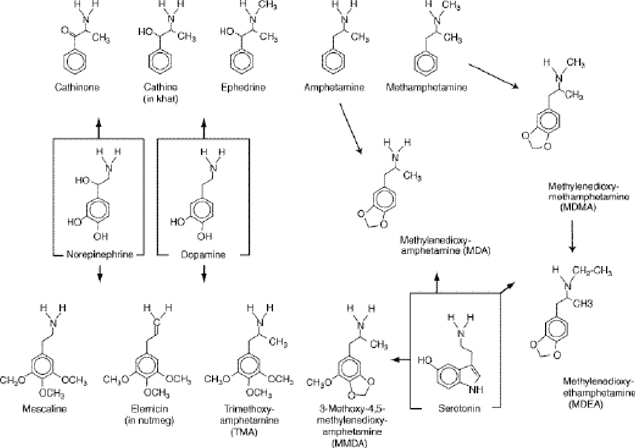 "synthesis of mdma Serotonergic neurotoxic thioether metabolites of 3,4- methylenedioxymethamphetamine (mdma, ""ecstasy""): synthesis, isolation, and."