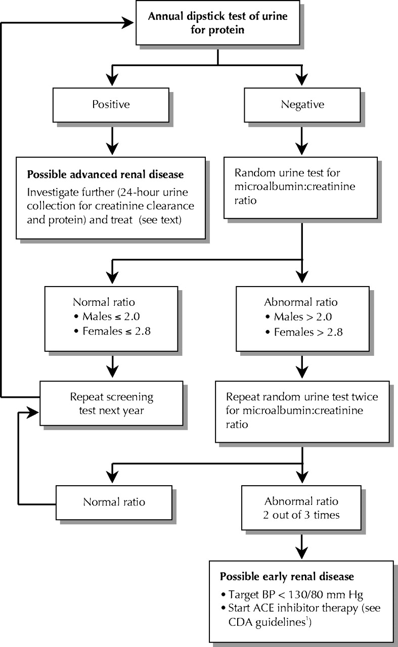 Kodierung diabetes mellitus flussdiagramm