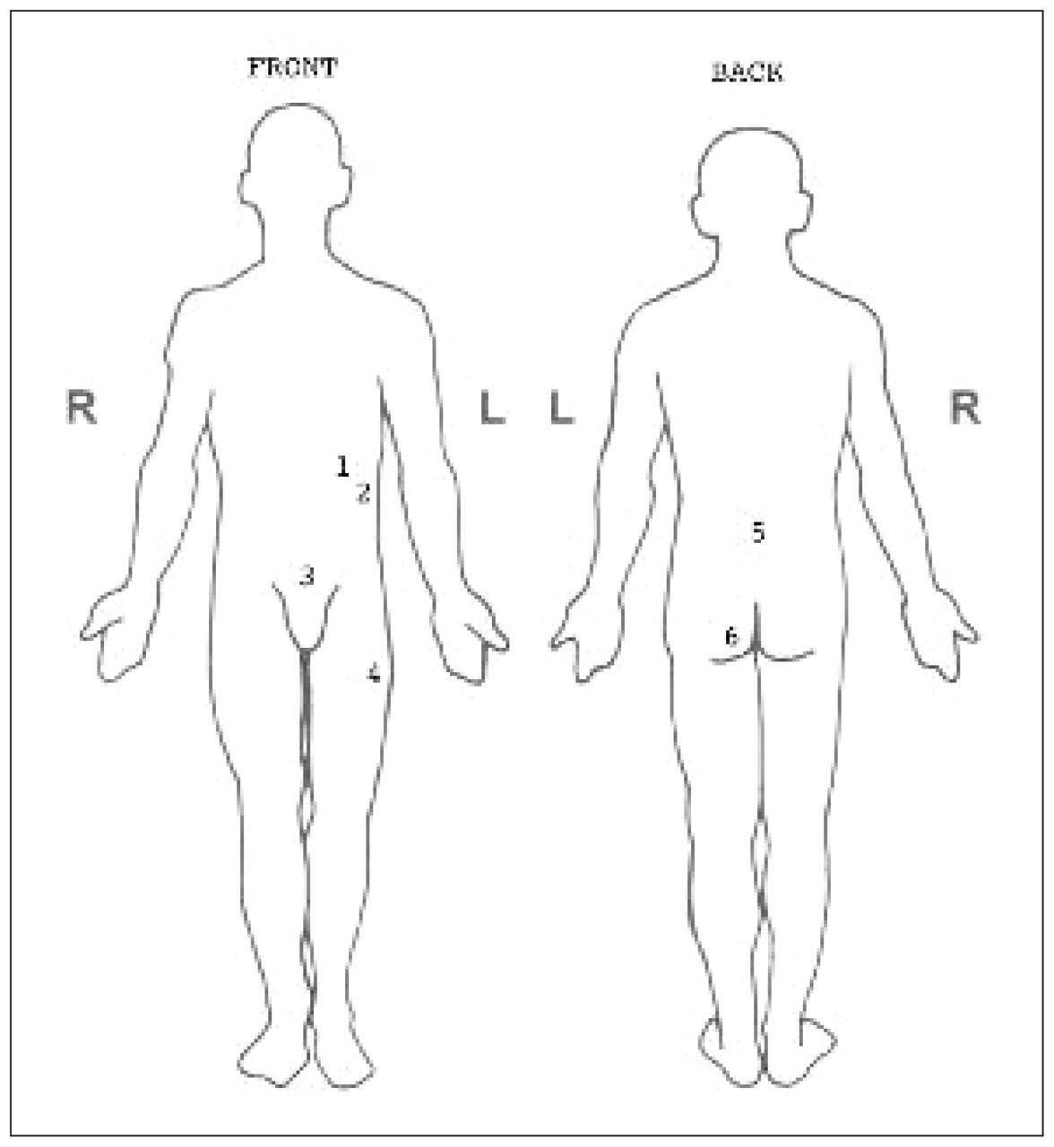 trauma body diagram wiring diagrams Trauma Assessment Body Diagram trauma body diagram wiring diagram trauma and addiction trauma body diagram