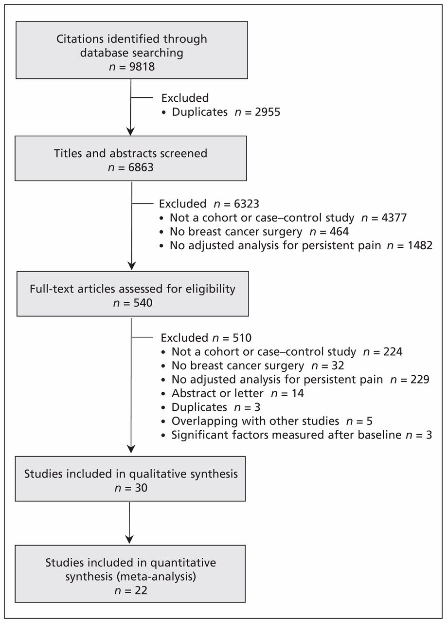 Predictors of persistent pain after breast cancer surgery: a
